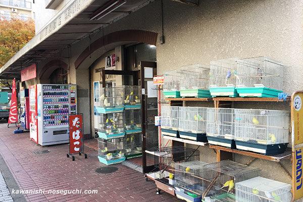 川西鳥獣店